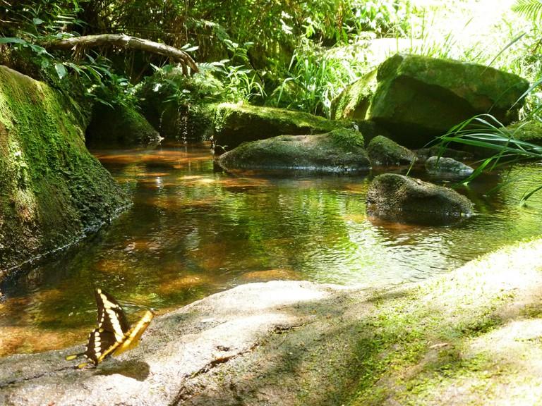 Parque Nacional Ybycuí © Laura Cuttier / Flickr