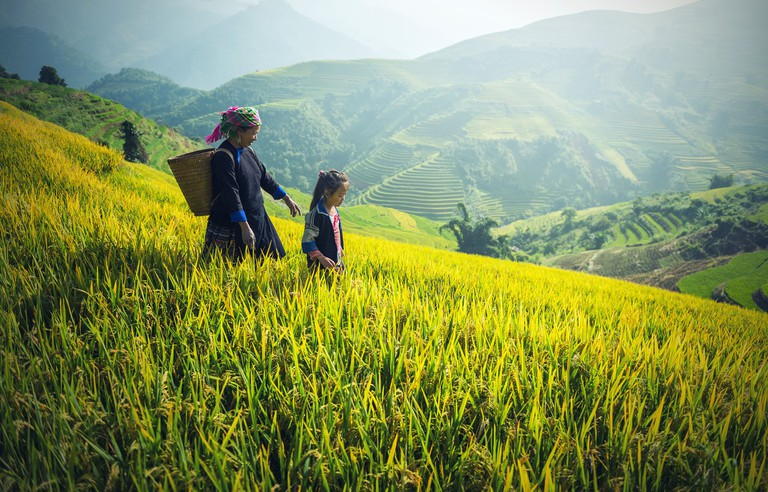 Cambodian family | © Sasin Tipchai /Pixabay