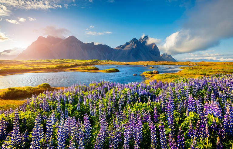 Icelandic Nature | ©Andrew Mayovskyy / Shutterstock