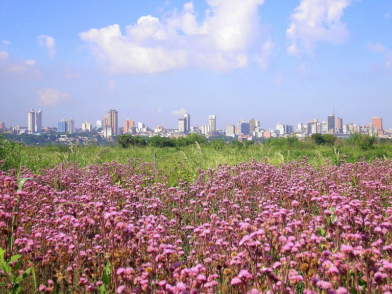 Asunción, Paraguay © FF MM / Wikimedia Commons
