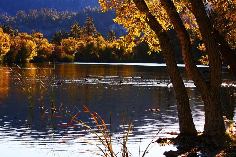 Fall in Wrightwood|©Rennett Stowe/Flickr