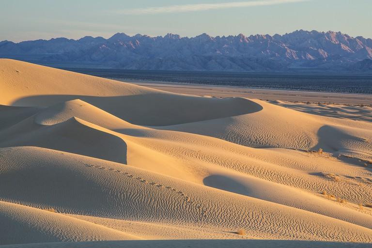 Cadiz Dunes|Photo by Bob Wick, Bureau of Land Management