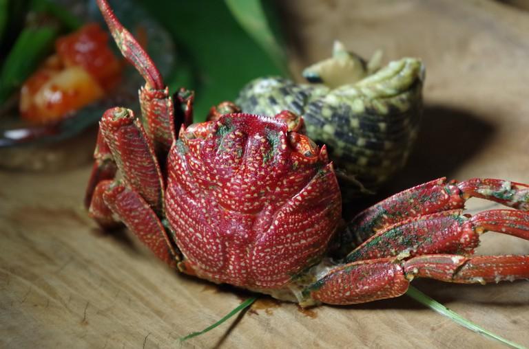 Crab | © Poy/Pixabay