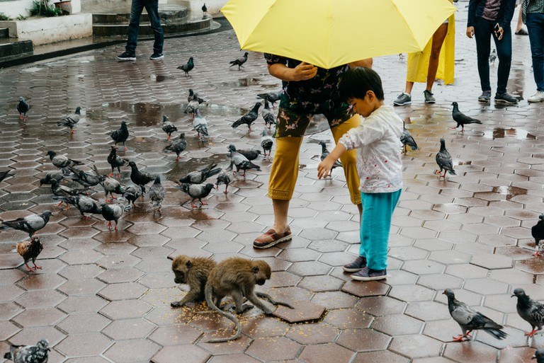 A child feeds the local monkeys at Batu Caves, Malaysia | Irene Navarro / © Culture Trip