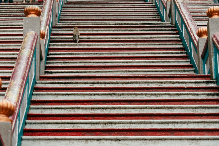 Local monkey climbs the steps of the Batu Caves, Malaysia | Irene Navarro / © Culture Trip