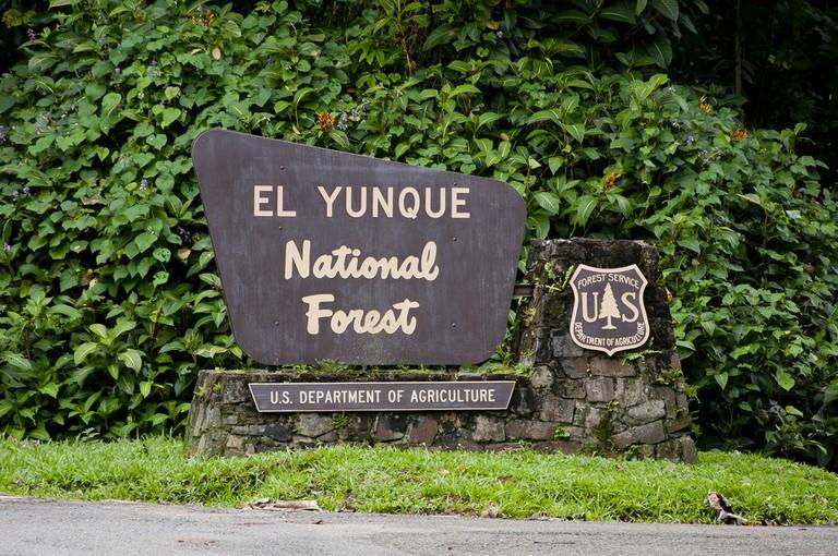Entrance to El Yunque sign | © vxla / Flickr