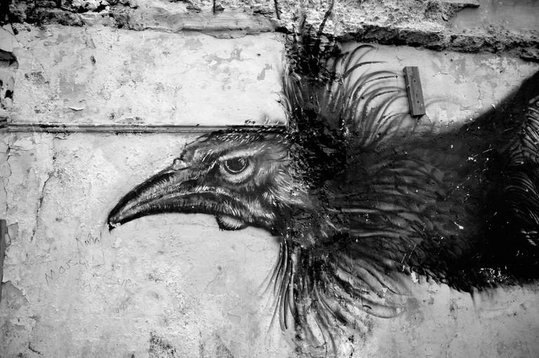 Fighting rooster graffiti   © Angel Xavier Viera-Vargas/ Flickr