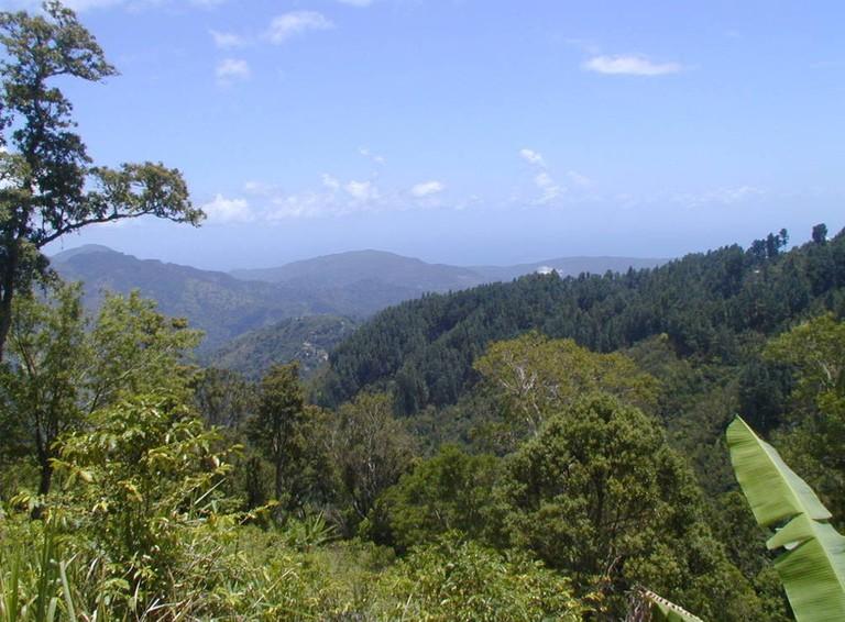 Blue Mountains | Courtesy of Jamaica Tourist Board