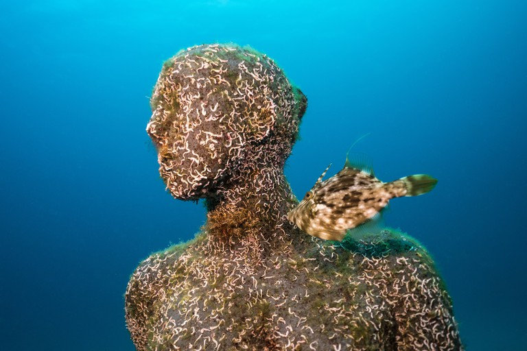 Life at Museo Atlántico, Jason deCaires Taylor | Courtesy of CACT Lanzarote