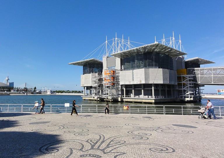 Lisbon Oceanarium © Jose Manuel / Wikimedia Commons