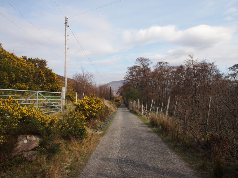 Road to Annie's Croft | Courtesy of Anderson, Shaw, & Gilbert