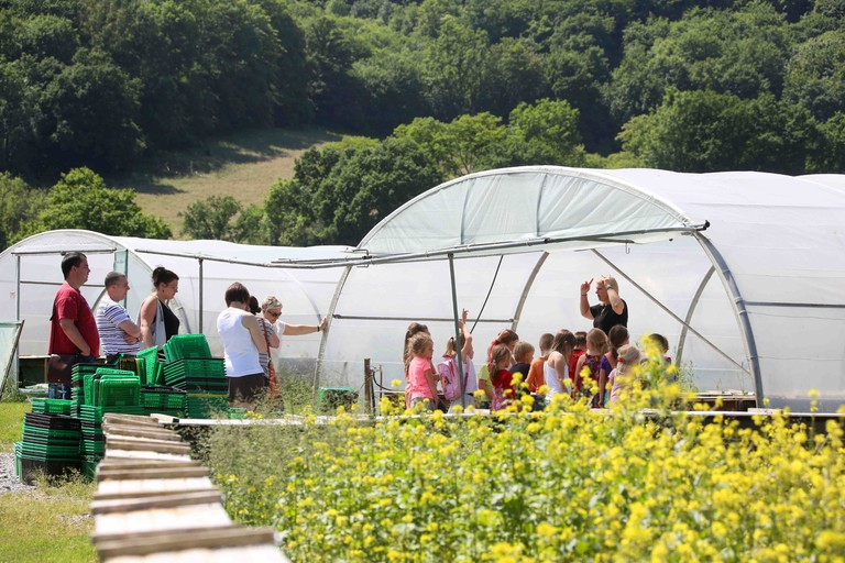 A group of curious little ones learning about the farm | courtesy of l'Escargotière de Warnant
