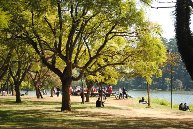 Parque do Ibirapuera SP