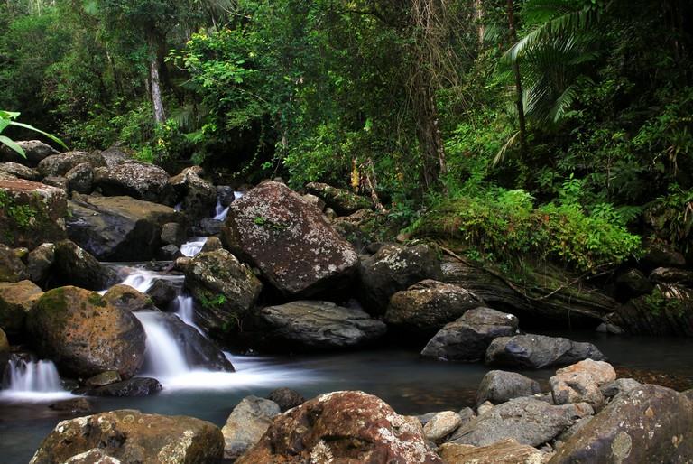 River in El Yunque | © Doreen O'Donovan / Flickr
