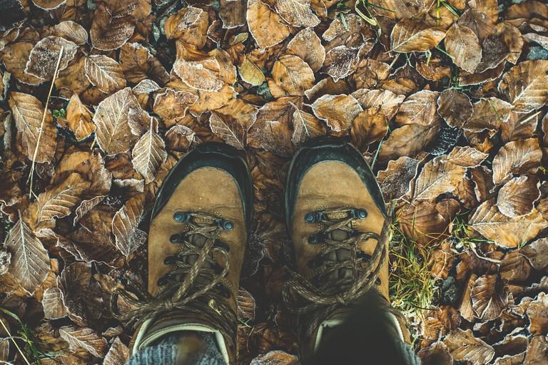 Hiking Shoes / Pixabay