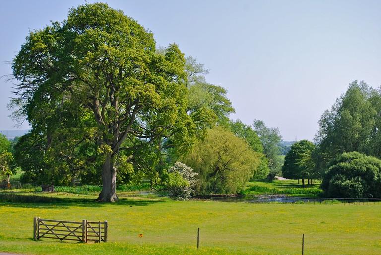 Killerton, Devonshire, England | © Chris Jenner/Shutterstock