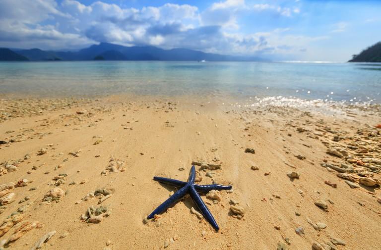 The beach town near Depapre, Papua | ©Yury Birukov / Shutterstock