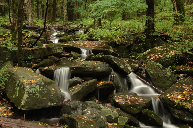 Great Smoky Mountains National Park / (c) Carl Wycoff / Flickr