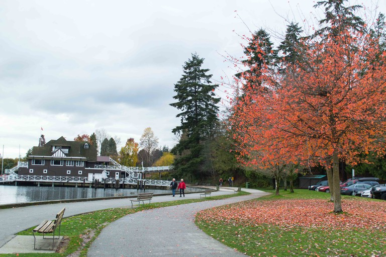 Fall in Stanley Park
