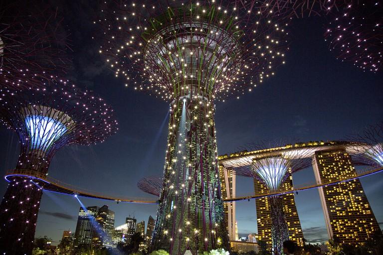 Supertree Grove, Gardens by the Bay   © Budiman Salleh/WikiCommons