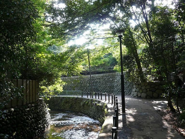 Todoroki Ravine Park, also known as Todoroki Valley or Keikoku