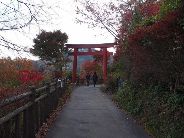 Autumn on Mitake-san