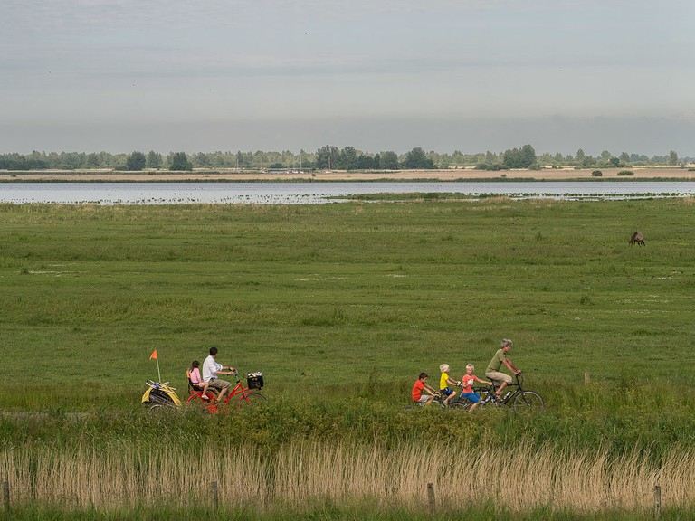 Cyclists in Lauwersmeer National Park