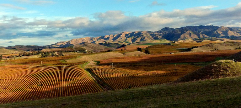 Marlborough Landscape | © Bernard Spragg/Flickr