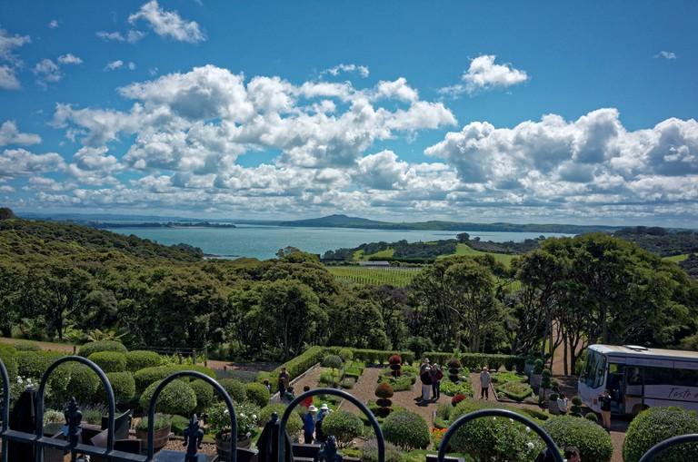Waiheke Island Landscape