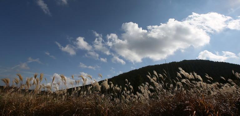 Geomun Oreum | © KoreaNet / Flickr