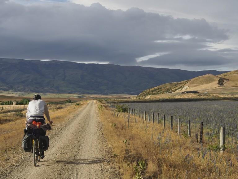 Riding the Otago Rail Trail