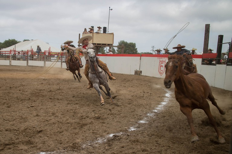 A charreada in action | © Brooke Binkowski/Flickr