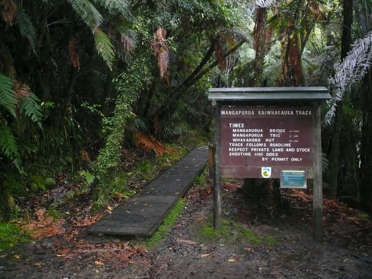 The Kaiwhakauka Track to the Bridge to Nowhere (Mangapurua)