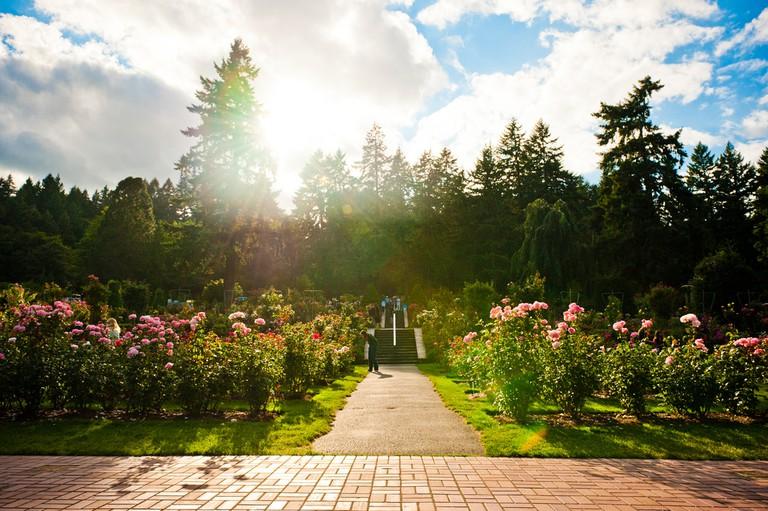 International Rose Test Garden | © star5112/Flickr
