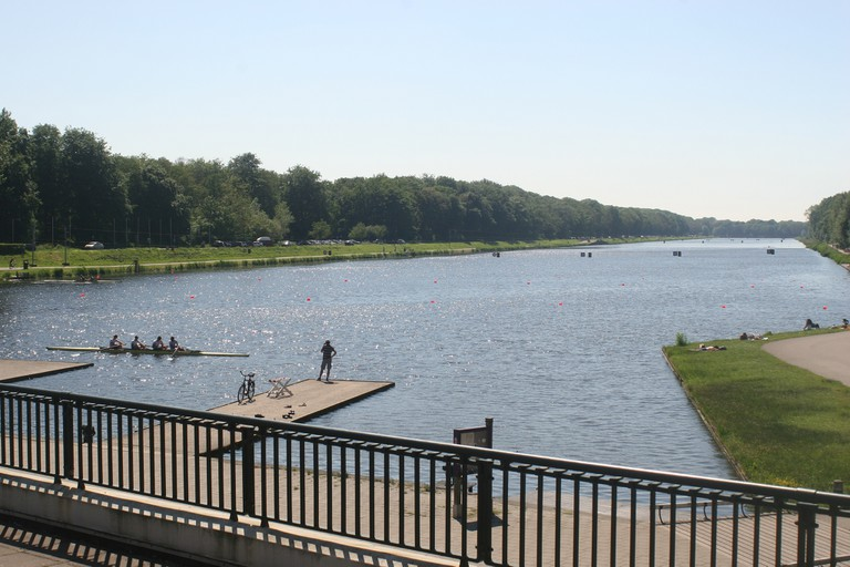 Amsterdamse Bos in summer