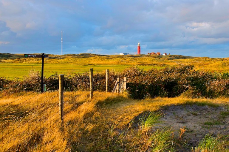 Texel's rugged northern shore