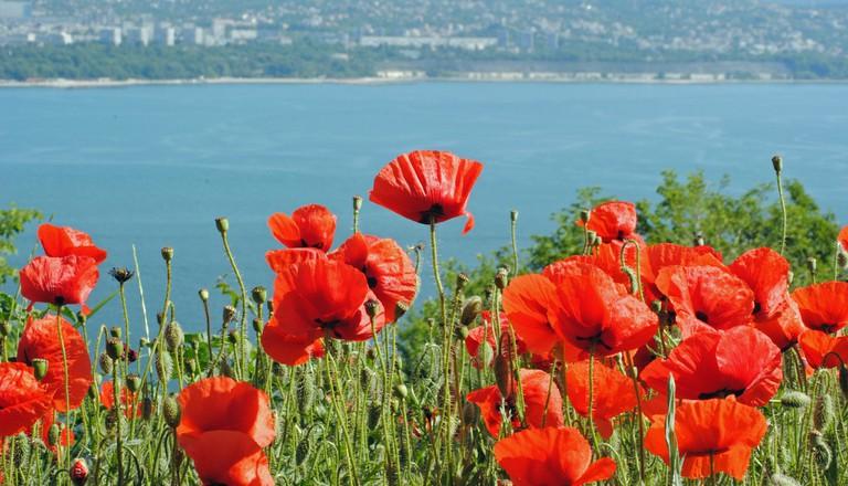 View of Varna | © Vicki Burton/Flickr