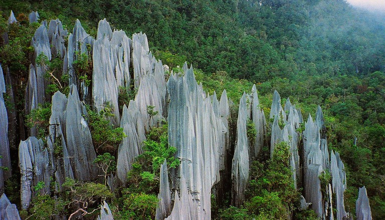 Gunung Mulu, Borneo | © Paul White / Flickr