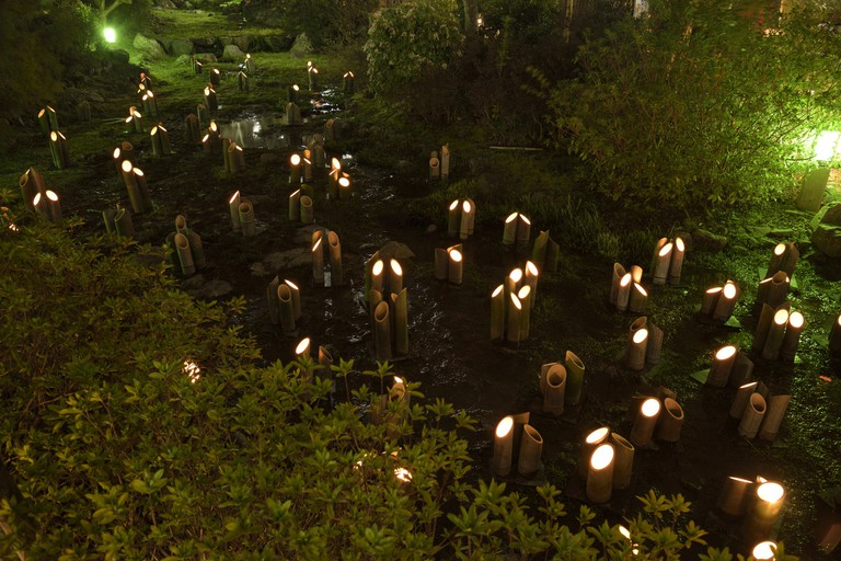 A River of Bamboo Lanterns