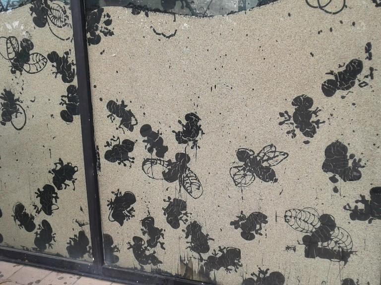 Ants in Barcelona | © Serena Basso