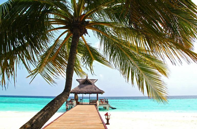 Beach hideaway|© Sharon Ang /Pixabay
