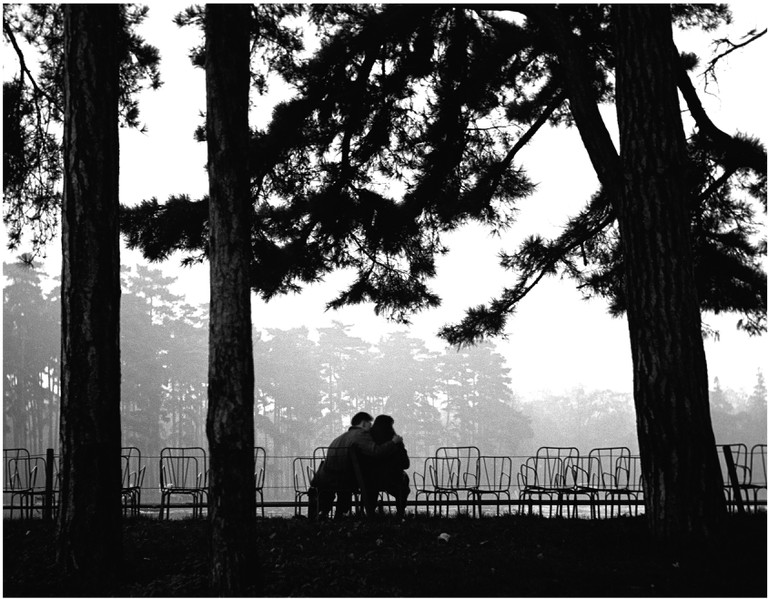 Bois de Boulogne, Paris, 1952 │© Sabine Weiss