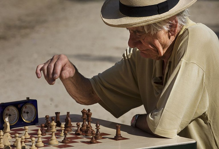 Chess player │© Jorge Royan / Wikimedia Commons