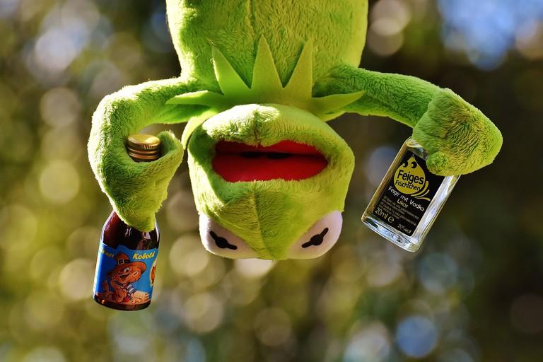 No Kermit, you're drunk | © Alexas_Fotos/Pixabay