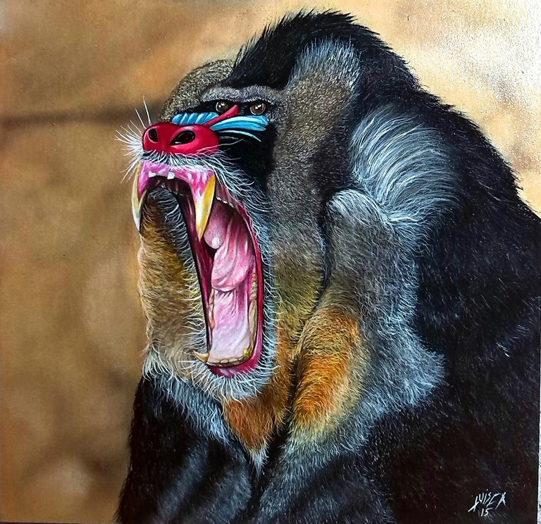 A baboon making a statement