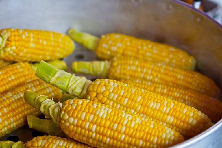 Corn | Pixabay