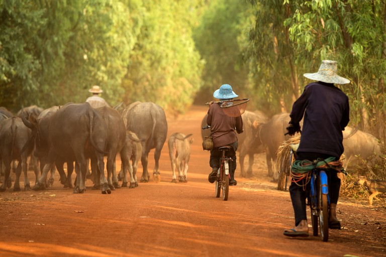 Cycling in Cambodia | © djmdep/Depositphotos