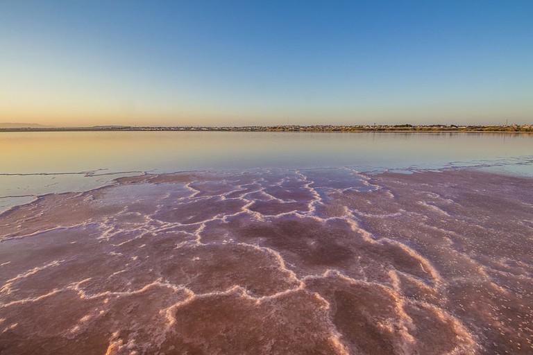 "<a href=""https://commons.wikimedia.org/wiki/File:Concentraci%C3%B3n_de_sal_en_la_orilla,_Torrevieja.jpg"">The pink salt lake in Torrevieja, Spain | © WikiCommons</a>"