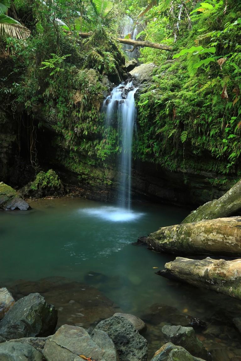 Juan Diego Waterfall | © Colin D. Young/ Shutterstock