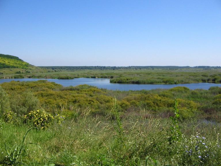 Srebarna Lake | © Mincov/WikiCommons